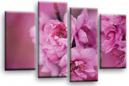 Floral Flower Wall Art Picture Pink Grey Spring Blossom Print Split